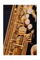 Buffet 400 Series Alto Saxophone Lacquer Finish additional images 1 3