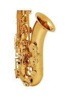 Buffet 100 Series Lacquered Finish Tenor Saxophone additional images 1 3