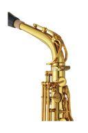 Yamaha YAS-82Z02 Custom Alto Saxophone additional images 1 2