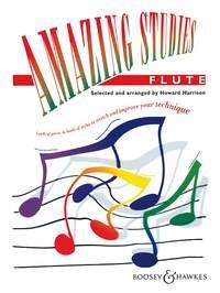 Amazing Studies: Flute (harrison)