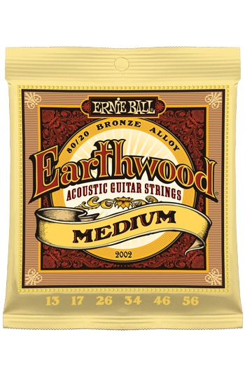 Ernie Ball Earthwood Medium
