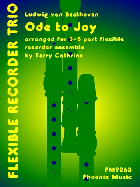 Ode To Joy: Flexible Recorder Trio