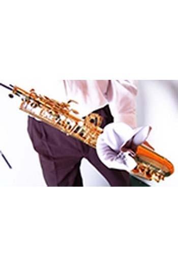 BG A30L Tenor Saxophone Body Swab