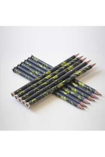 Magneto`s Pencil (wood/magnet) - Magnetic Top Attaches To Music Stand (Green/Anthracite)