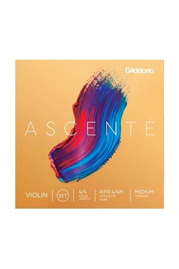 Ascente Violin Set (4/4) Medium Tension