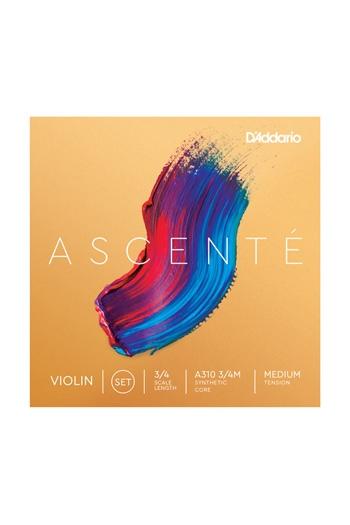 Ascente Violin Set (3/4) Medium Tension